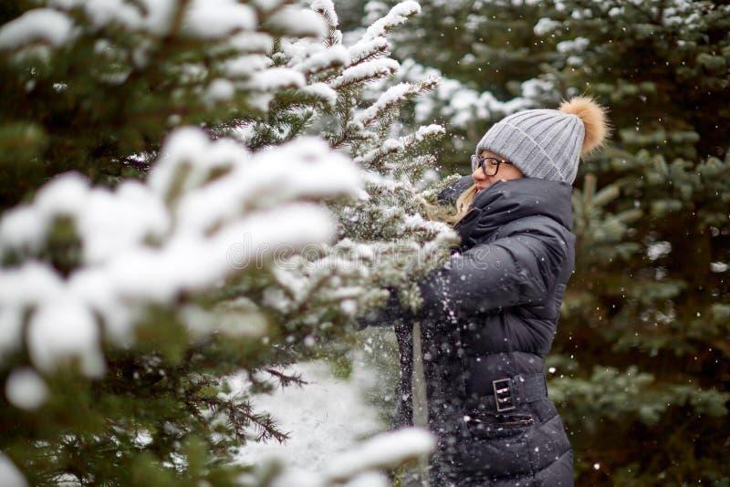 Mulher alegre que toca na árvore nevado das coníferas foto de stock