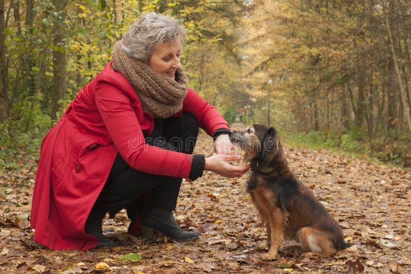 Mulher aposentada na floresta com seu animal de estimação imagem de stock