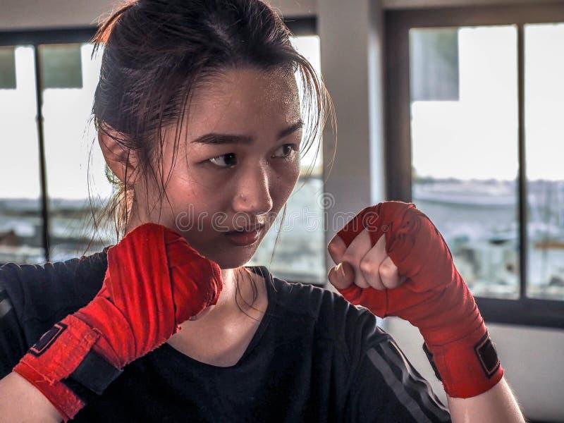 A mulher asiática atrativa nova com luvas de encaixotamento está pronta para a batalha fotografia de stock royalty free