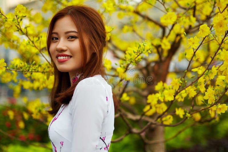 Mulher asiática da beleza na roupa tradicional de Vietname Cultura de Ásia imagem de stock