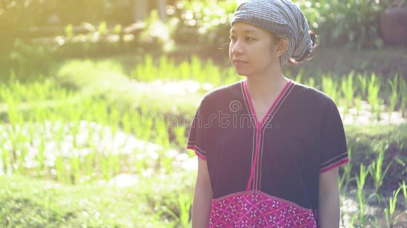 Mulher asiática das éticas com sorriso nativo do vestido em seu arroz orgânico fi imagem de stock