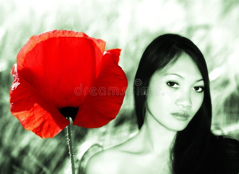 Mulher asiática e uma flor ilustração stock