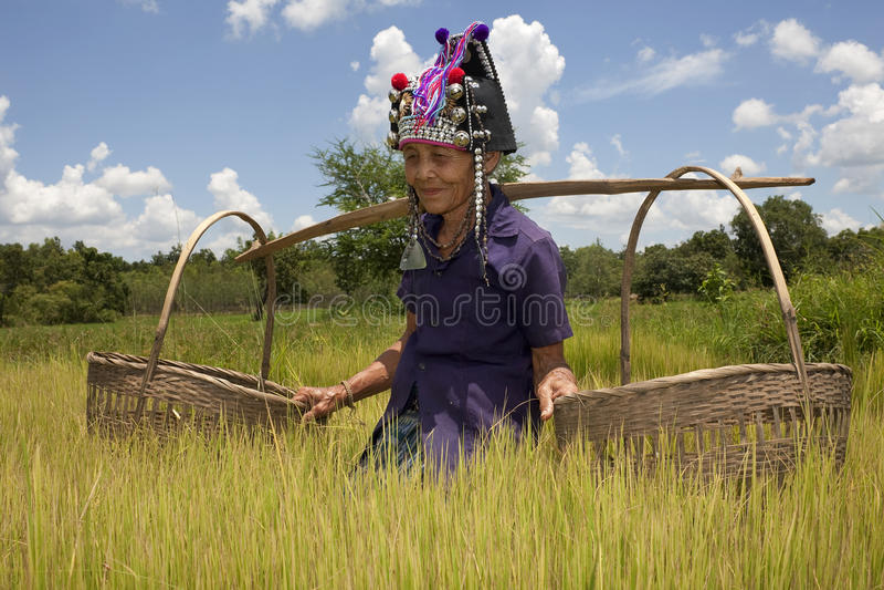 Mulher asiática idosa, Akha foto de stock royalty free