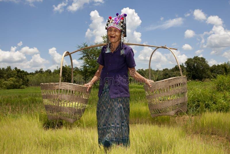 Mulher asiática idosa, Akha fotografia de stock royalty free