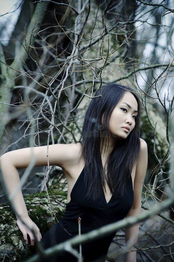 Mulher asiática na floresta foto de stock royalty free