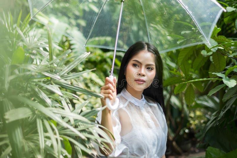 Mulher asiática que mantém o guarda-chuva plástico transparente no dia chuvoso durante a estada exterior na floresta tropical com imagem de stock