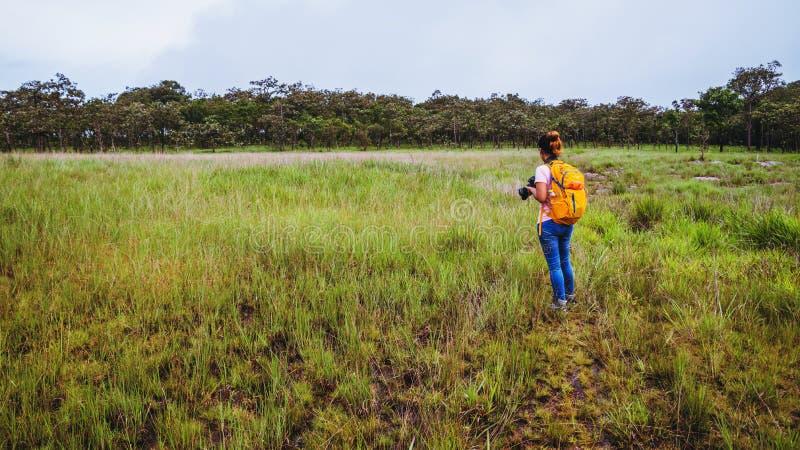 Mulher asiática viaja por natureza Relaxe de viagem Caminhada estuda o caminho da natureza na floresta imagem de stock royalty free