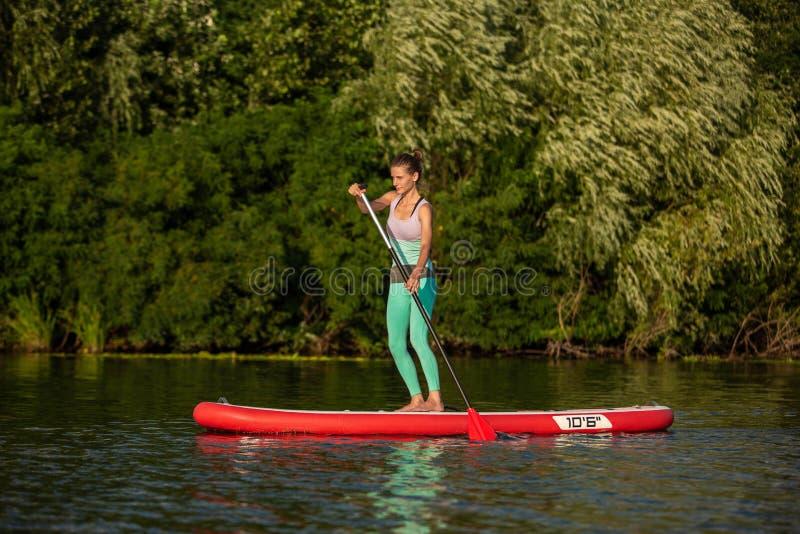Mulher atlética nova que faz a aptidão em uma placa com um remo em um lago imagens de stock royalty free