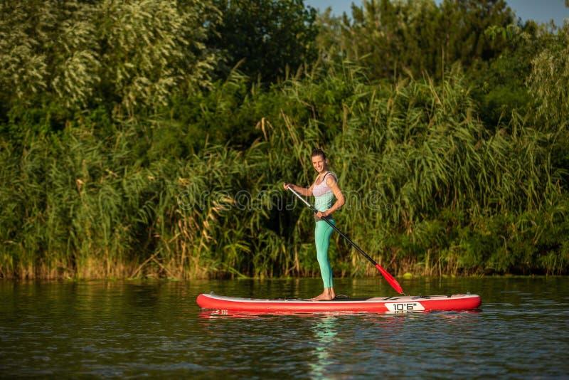 Mulher atlética nova que faz a aptidão em uma placa com um remo em um lago fotos de stock