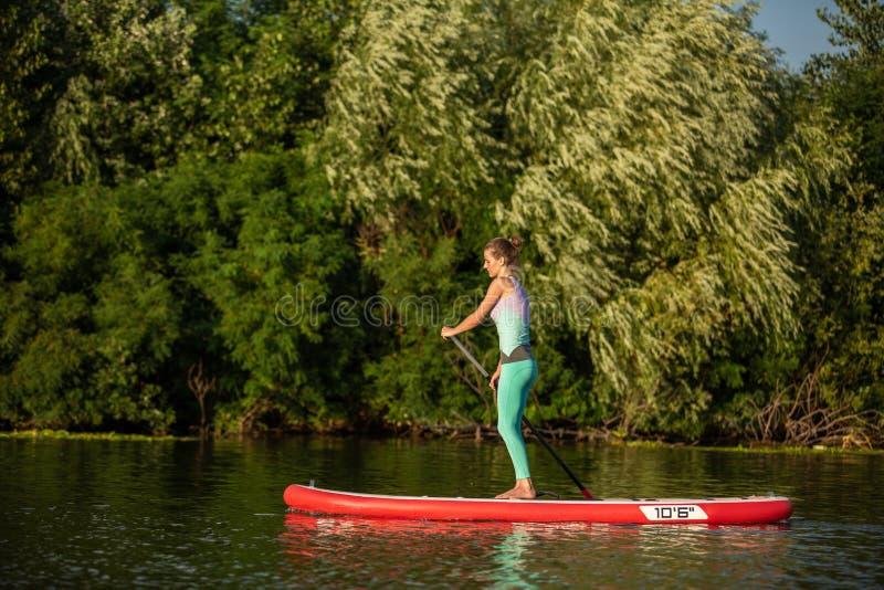 Mulher atlética nova que faz a aptidão em uma placa com um remo em um lago imagem de stock