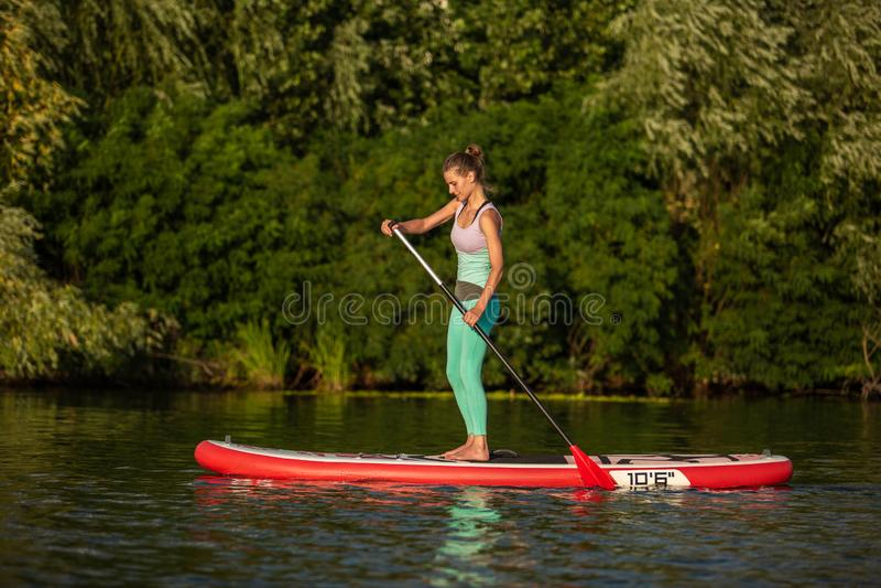Mulher atlética nova que faz a aptidão em uma placa com um remo em um lago fotografia de stock