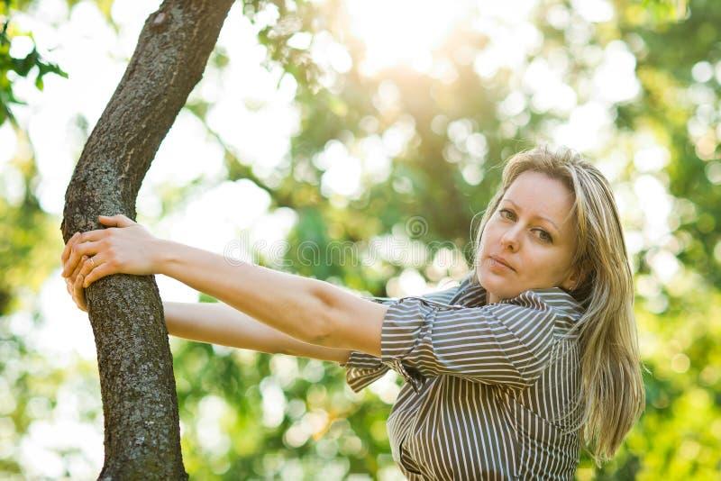 A mulher atrativa está levantando na árvore - luz solar imagem de stock