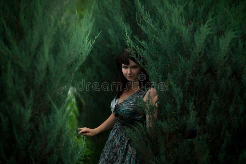 Mulher atrativa no thuja Bruxa, misteriosa outdoor fotos de stock royalty free