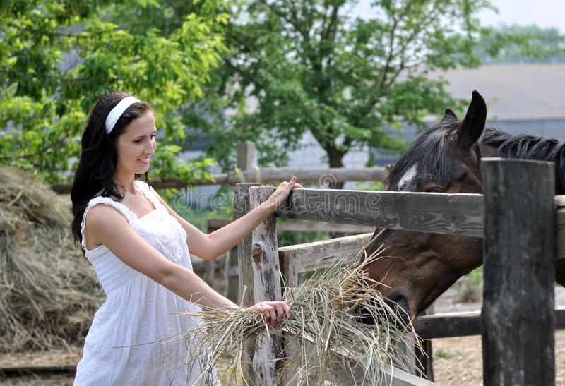 A mulher atrativa nova alimenta o cavalo na exploração agrícola foto de stock royalty free