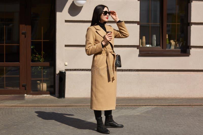 A mulher blackhaired agradável nova olha na distância, tenta escolher a melhor estrada ter a caminhada longa A senhora alta elega foto de stock royalty free