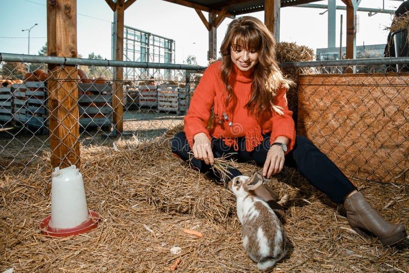 A mulher bonita alimenta a exploração agrícola dos coelhos imagens de stock royalty free