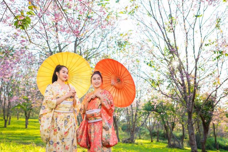 Mulher bonita asiática que veste o quimono e a flor de cerejeira japoneses tradicionais na mola, Japão fotografia de stock