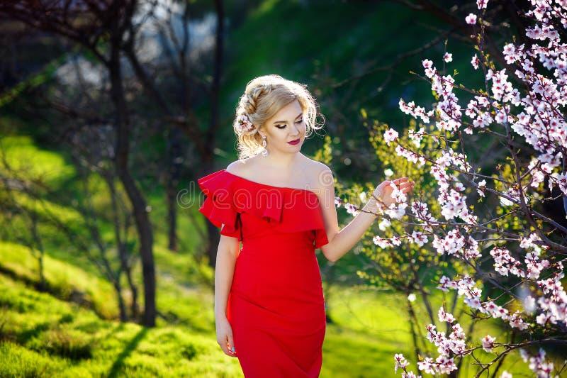 Mulher bonita bonita nova que levanta no vestido luxuoso da noite longa contra arbustos com a árvore de florescência da mola Esti fotos de stock