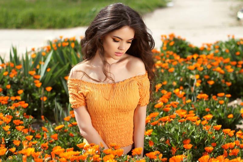 Mulher bonita com cabelo marrom longo sobre o campo de flores. Close up foto de stock