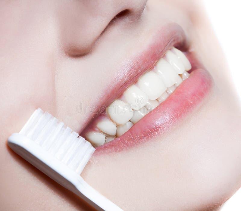 Mulher bonita com escova de dentes Cuidado dental fotografia de stock royalty free