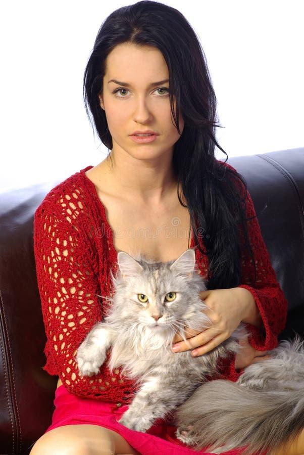 Mulher bonita com gato foto de stock