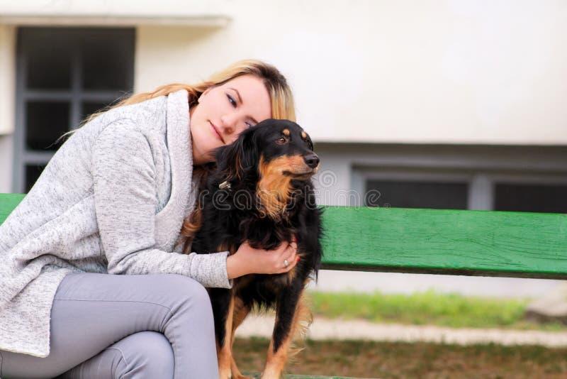 Mulher bonita com seu cão misturado pequeno da raça que senta-se e que levanta na frente da câmera no banco de madeira no parque  imagens de stock royalty free