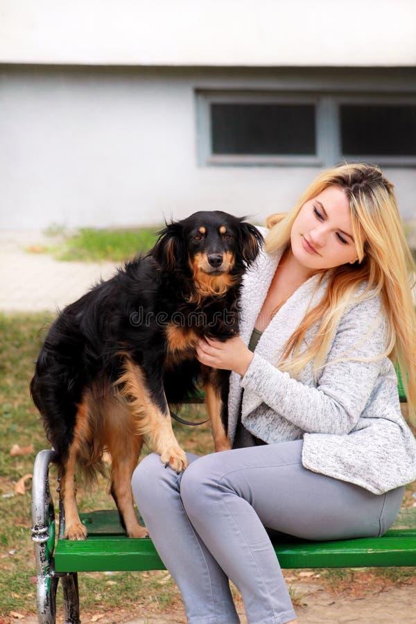 Mulher bonita com seu cão misturado pequeno da raça que senta-se e que levanta na frente da câmera no banco de madeira no parque  foto de stock royalty free
