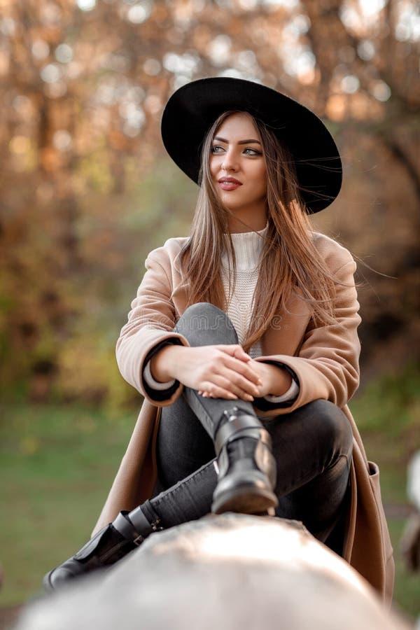 Mulher bonita da forma no chapéu negro que senta-se na árvore foto de stock royalty free