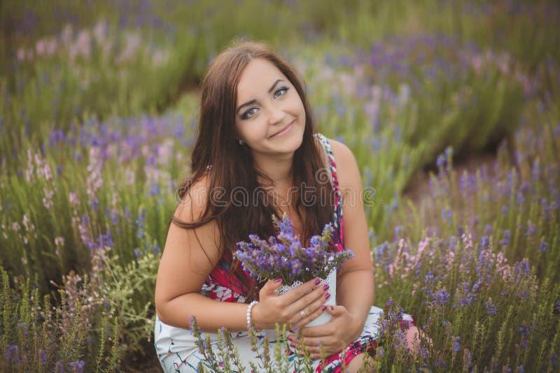 A mulher bonita de provence que relaxa no campo da alfazema que olha no por do sol que guarda a cesta com lavanda floresce série  foto de stock royalty free