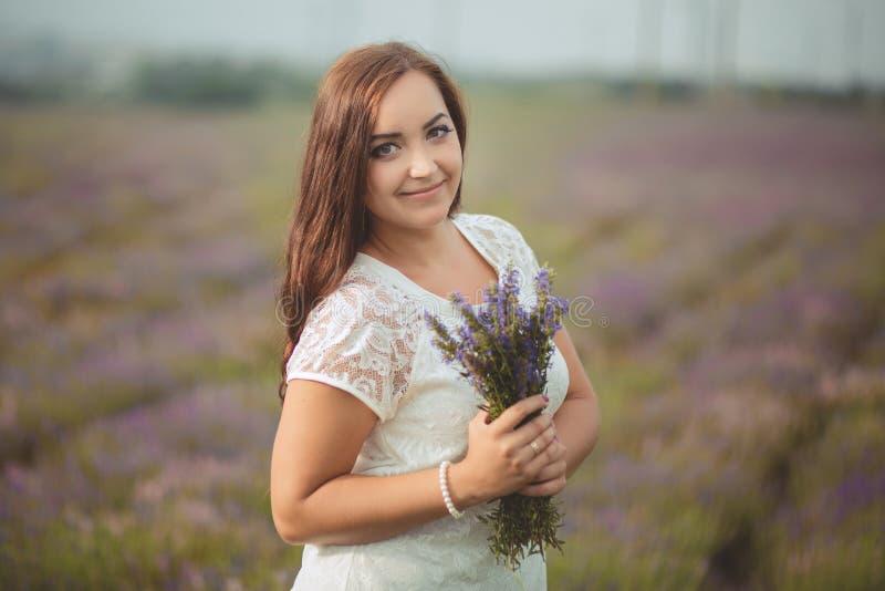 A mulher bonita de provence que relaxa no campo da alfazema que olha no por do sol que guarda a cesta com lavanda floresce série  imagens de stock