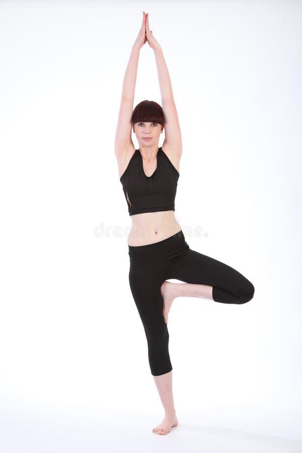 Mulher bonita do ajuste no Pose Vrksasana da árvore da ioga imagem de stock