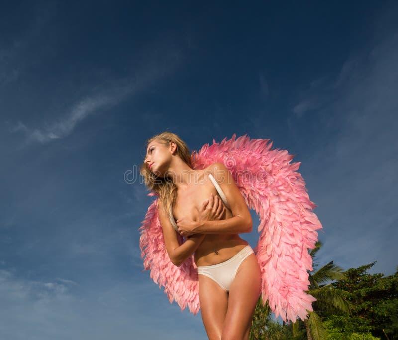 Mulher bonita do anjo com asas cor-de-rosa imagens de stock royalty free