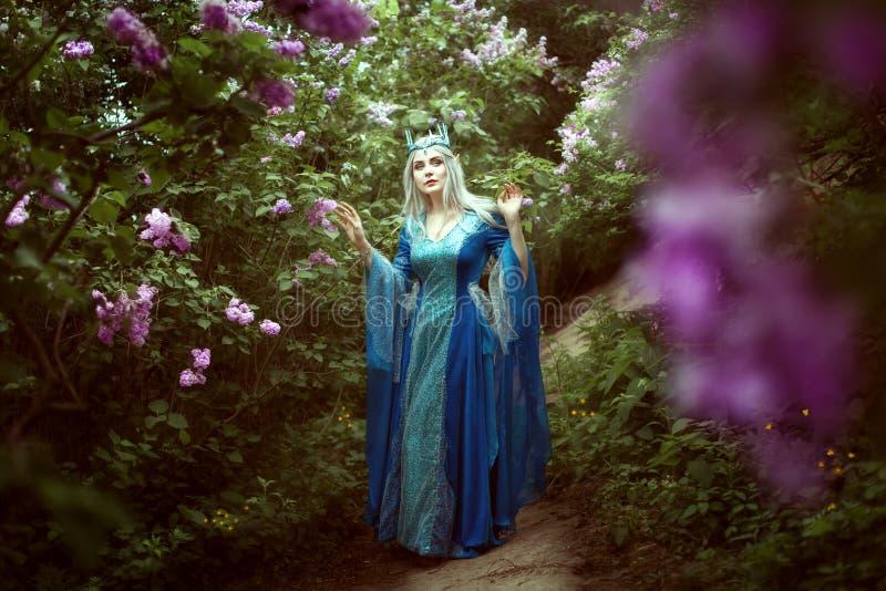 A mulher bonita do duende anda em uma floresta feericamente fotografia de stock royalty free