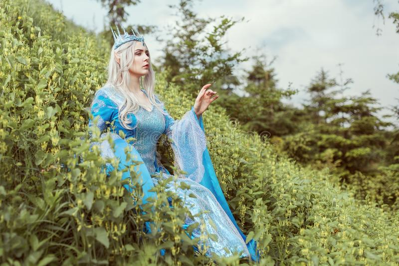 Mulher bonita do duende em um vestido azul imagens de stock