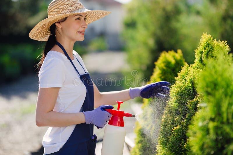 A mulher bonita do jardineiro no chapéu de palha polvilha plantas de um pulverizador do jardim fotos de stock royalty free