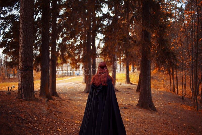 Mulher bonita e misteriosa nova nas madeiras, no casaco preto com capa, na imagem do duende da floresta ou na bruxa, traseira imagens de stock