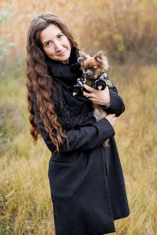 Mulher bonita e seu cão no parque do outono fotos de stock