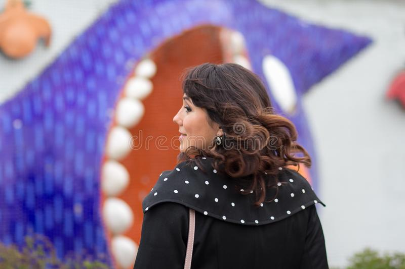 Mulher bonita elegantemente vestida no perfil foto de stock