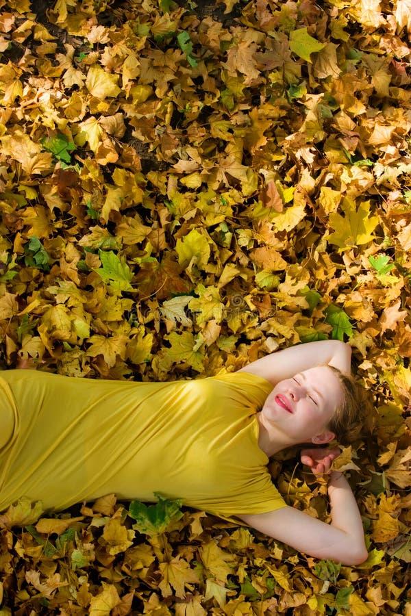 Mulher bonita - folhas de outono amarelas - queda fotos de stock
