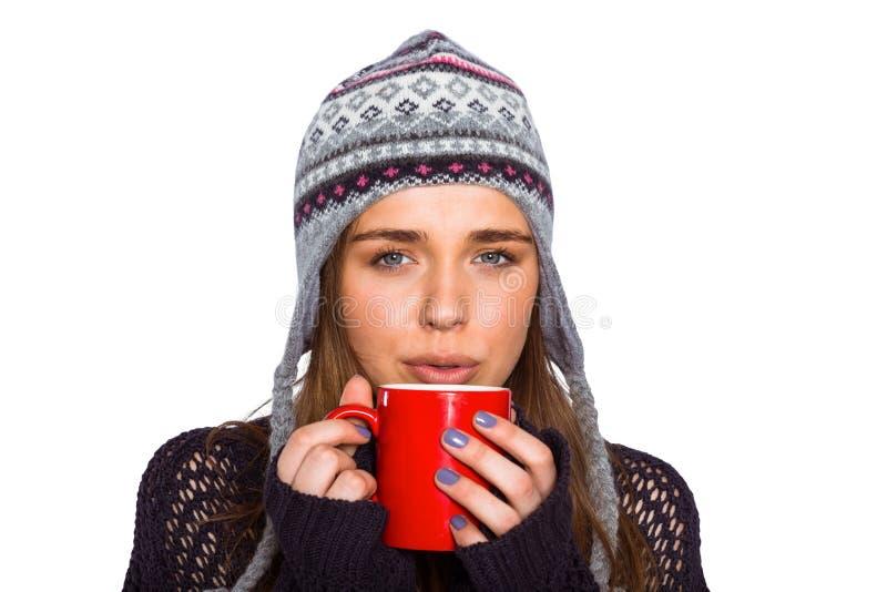 Mulher bonita no café bebendo da roupa morna foto de stock