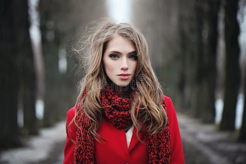 Mulher bonita no lenço vermelho no parque frio do inverno fotos de stock