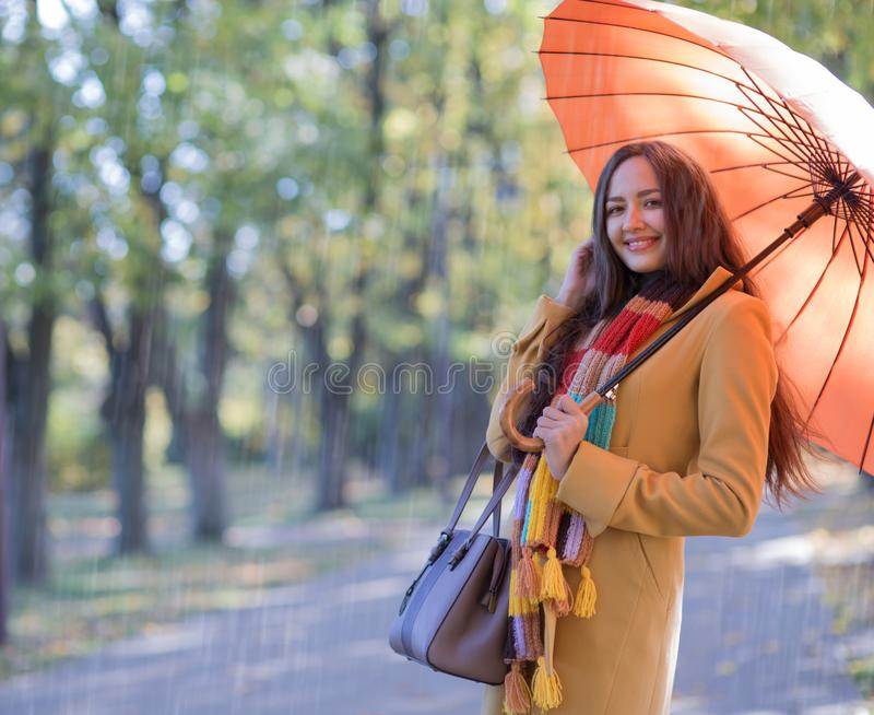Mulher bonita no parque do outono foto de stock