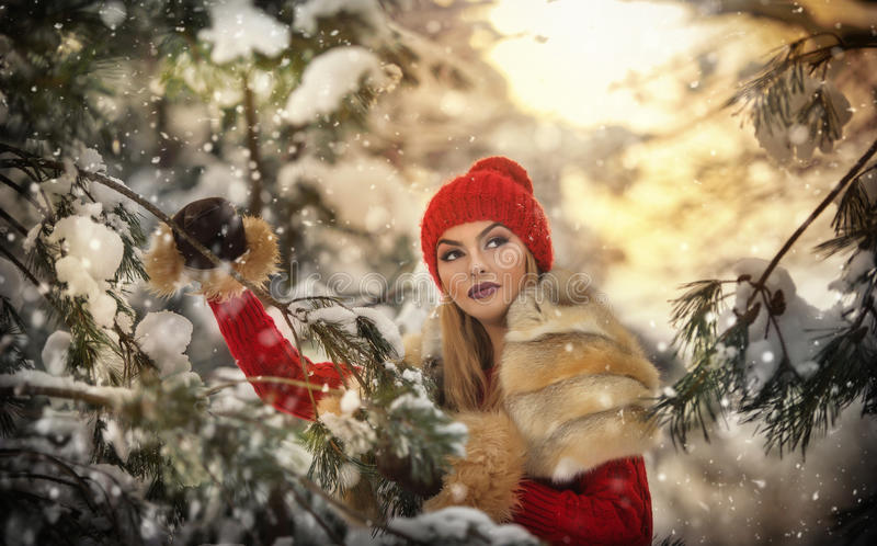 Mulher bonita no vermelho com cabo marrom da pele que aprecia o cenário do inverno na menina loura da floresta que levanta sob ra fotos de stock