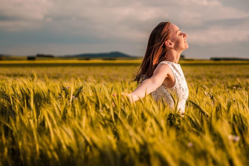 Mulher bonita no vestido branco no campo de trigo amarelo dourado imagem de stock royalty free