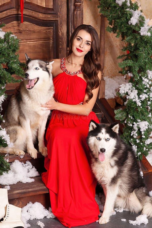 Mulher bonita no vestido de nivelamento vermelho que senta-se nas etapas com seu cão, cão de puxar trenós em um fundo de uma sala fotos de stock royalty free