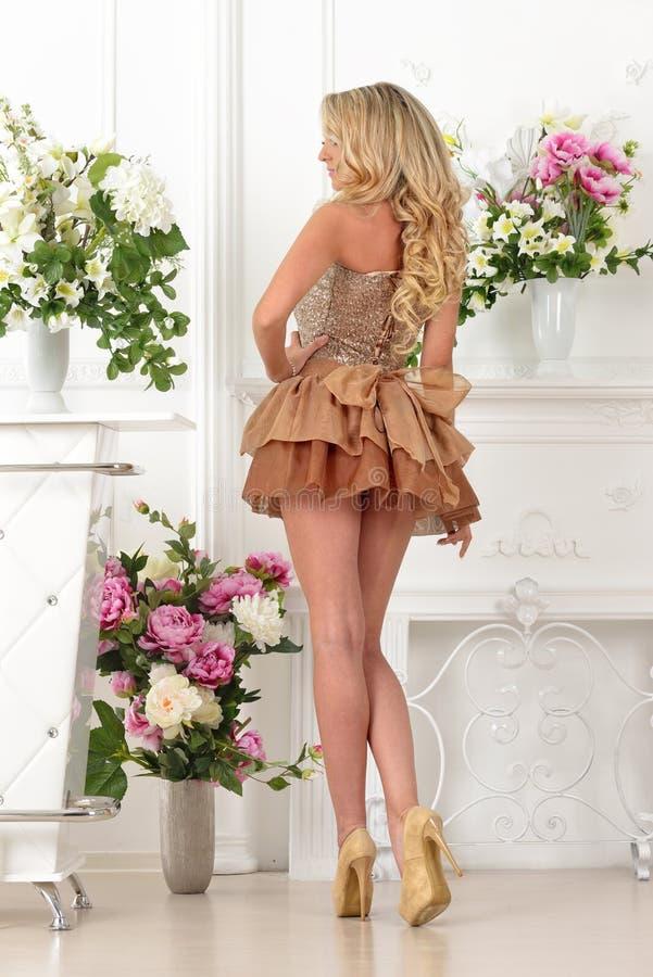 Mulher bonita no vestido marrom no interior luxuoso. fotos de stock