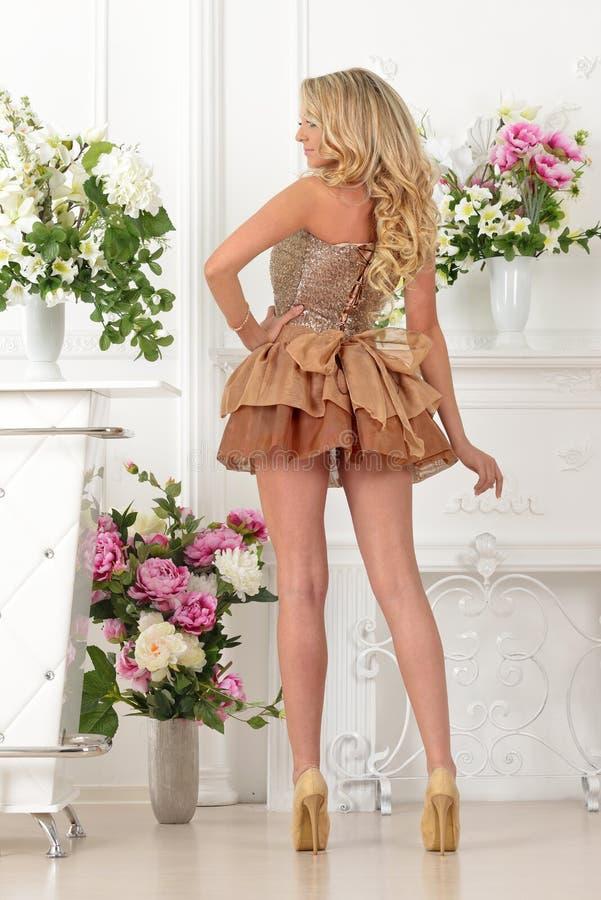 Mulher bonita no vestido marrom no interior luxuoso. imagem de stock royalty free