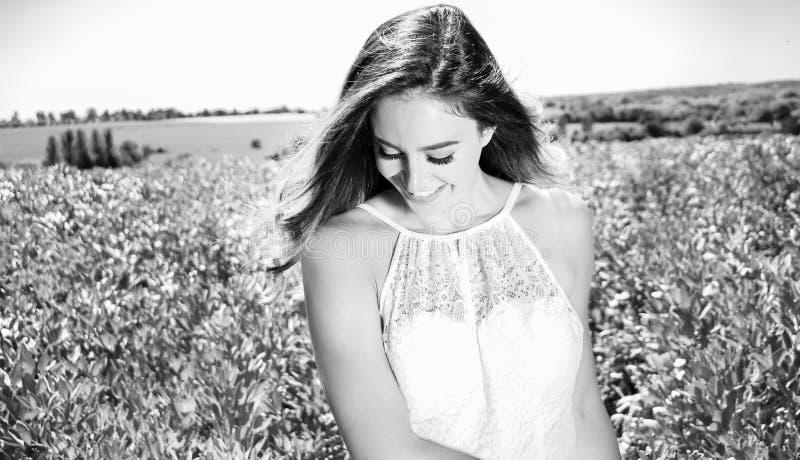 A mulher bonita, noiva anda através do campo da colheita em um dia ensolarado do ` s do verão fotos de stock royalty free