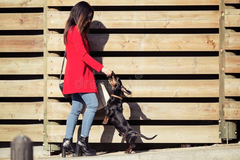 Mulher bonita nova fresca que alimenta seu cão doce playfuly na rua fotos de stock royalty free