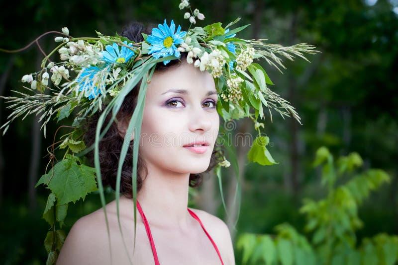 Mulher bonita nova na floresta, fada fotos de stock